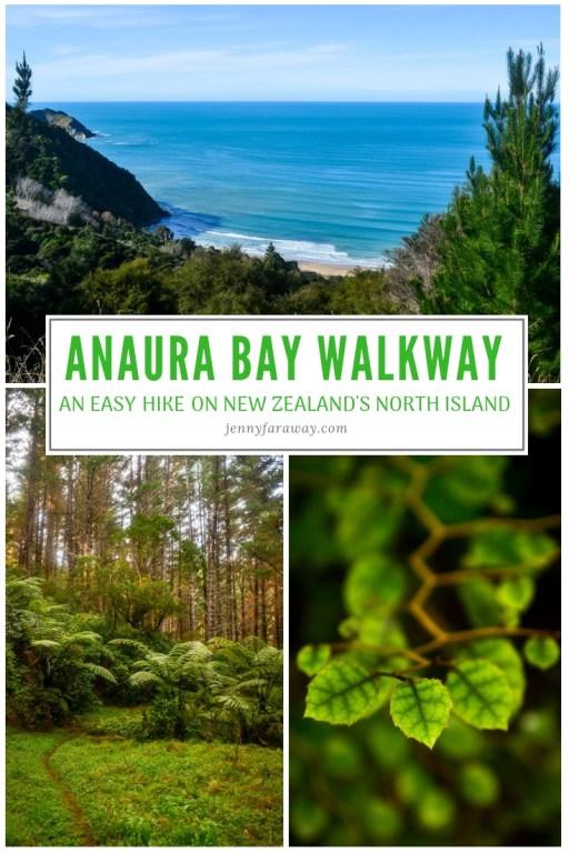 Pinterest Graphic for Anaura Bay Walkway