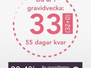 gravid vecka 33