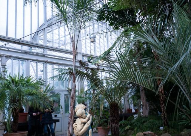 Bilder från helgen trädgårdsföreningen palmhuset