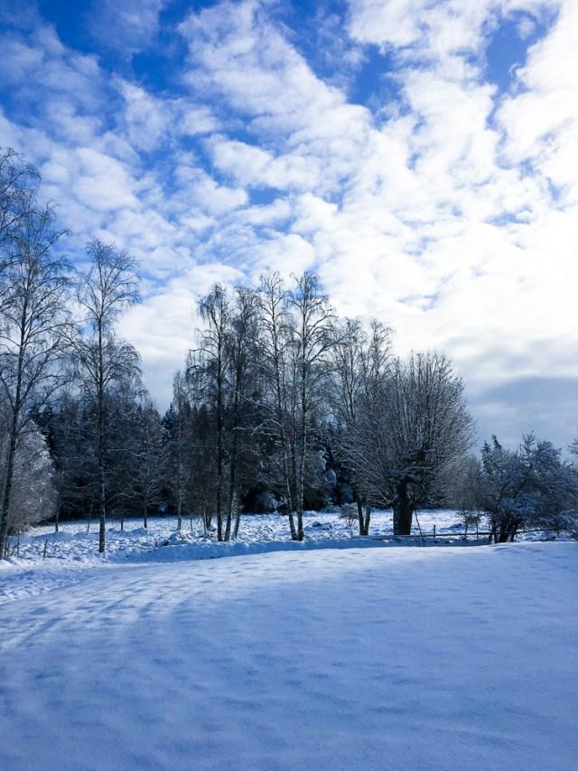 snö-11