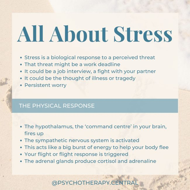 ALL ABOUT STRESS… Stress is a biological response to a perceived threat That threat might be a work deadline It could be a job interview, a fight with your partner It could be the thought of illness or tragedy Persistent worry