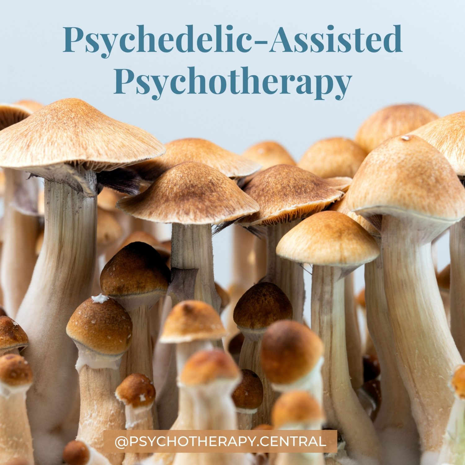 Psychadelic-Assisted Psychotherapy