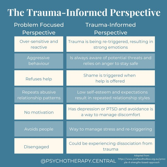 The Trauma informed perspective