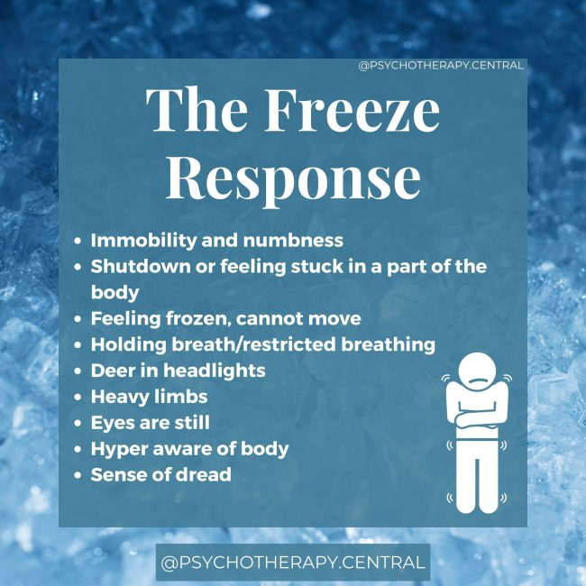 The Freeze Trauma Response Immobility and numbness Shutdown or feeling stuck in a part of the body Feeling frozen, cannot move Holding breath/restricted breathing Deer in headlights Heavy limbs Eyes are still Hyper aware of body Sense of dread