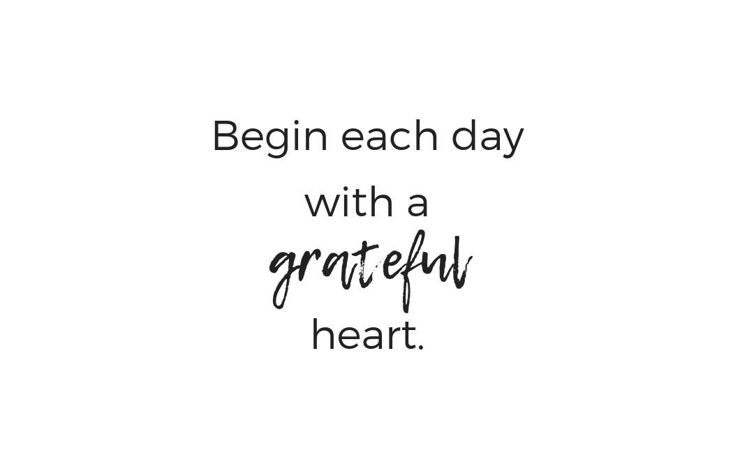 Gratitude 🙏