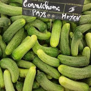 Cucumber_Parisienne Cornichon de Bourbonne