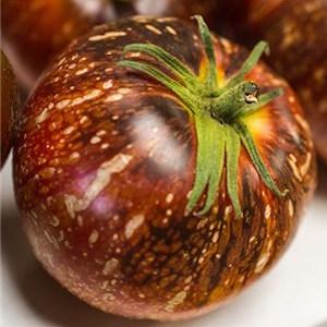Dark Galaxy Tomato