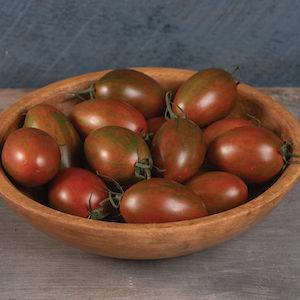 Bronze Torch Tomato