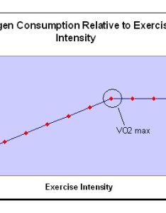 Vo max graph also aerobic power  maximal oxygen uptake jen reviews rh jenreviews
