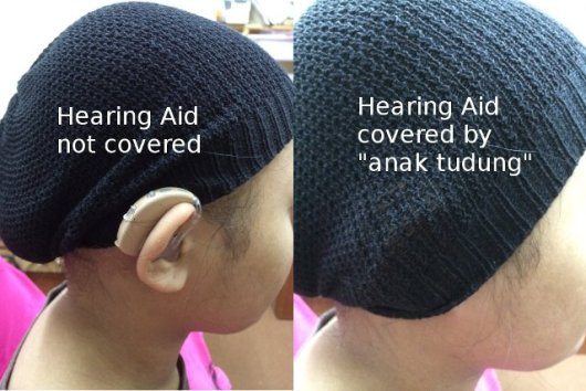 hidden hearing aids