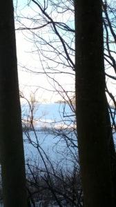 Dagslys, vinter