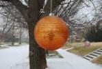 Tree Bobbles, Orange