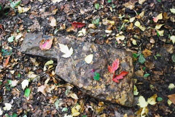 Oklahoma shaped rock