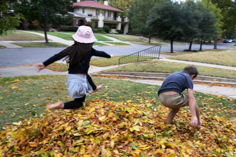 Jumping Over A Leaf Pile
