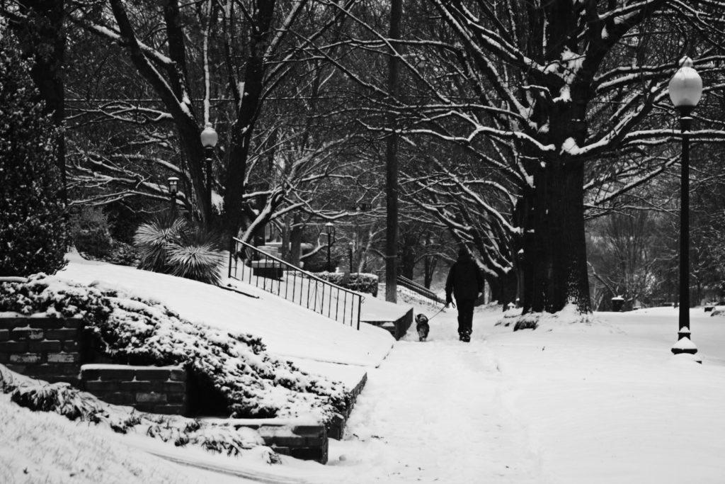 Walking Dog in Snow Gen Xer