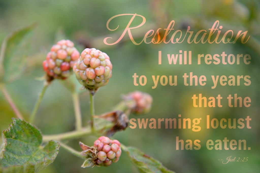 I will restore to you the years the swarming locust has eaten