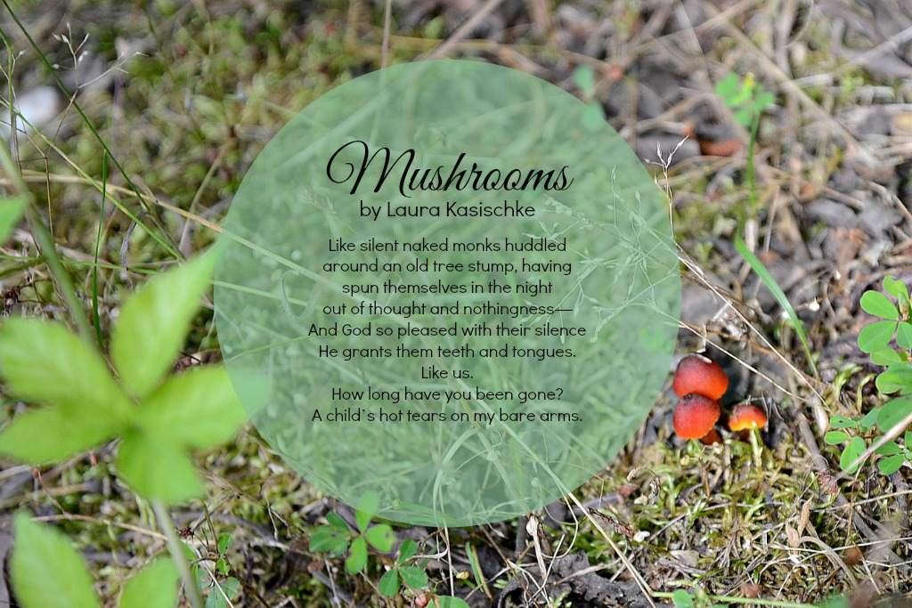 Mushrooms Poem