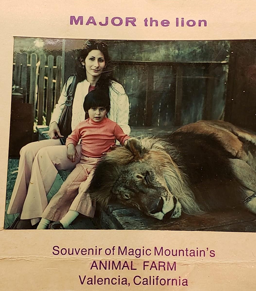 Major the Lion Magic Mountain Amusement Park 1970s