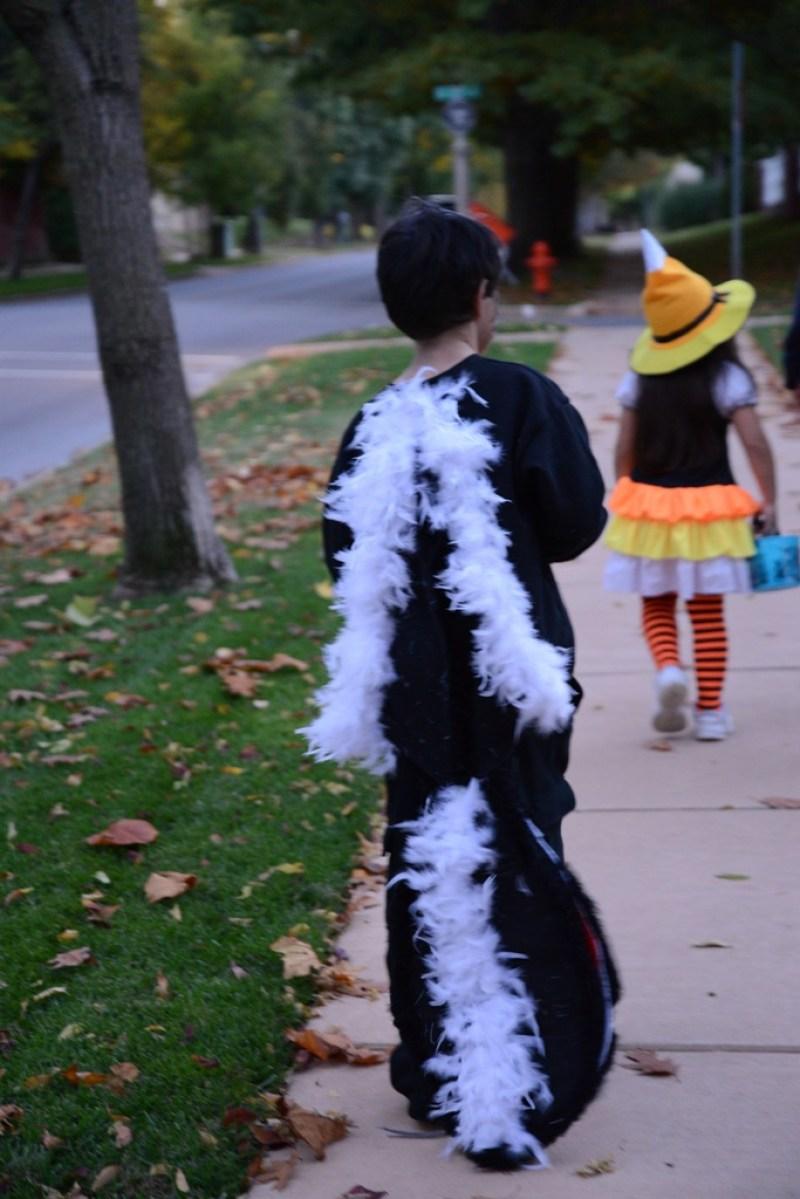 Sullivan's skunk costume