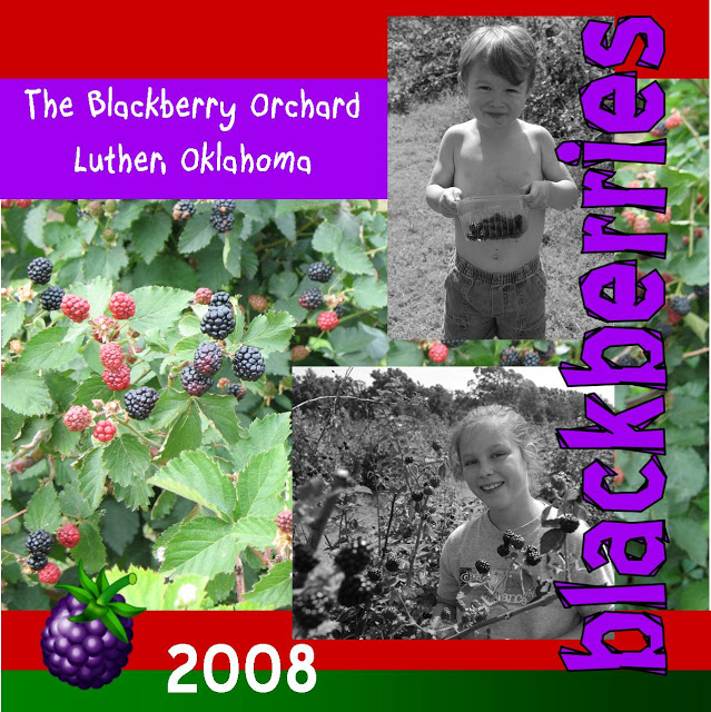 Picking Blackberries in Luther, Oklahoma