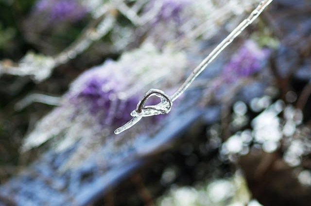 ice is so magical when frozen on vines