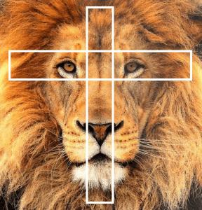 croix de vie symétrie