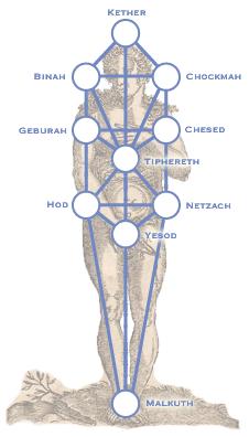 sephiroth et corps humain