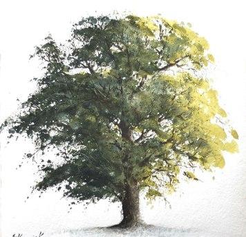 """Ash tree 1 £640 8""""x 9"""""""