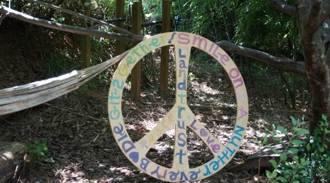 LCCLT Peace Sign