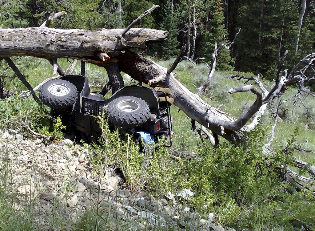 Applying Alabama's Guest-Passenger Statute to ATVs