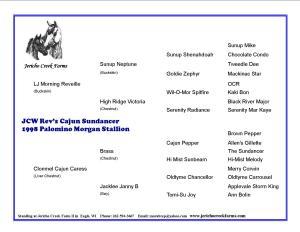 JCW Rev's Cajun Sundancer pedigree