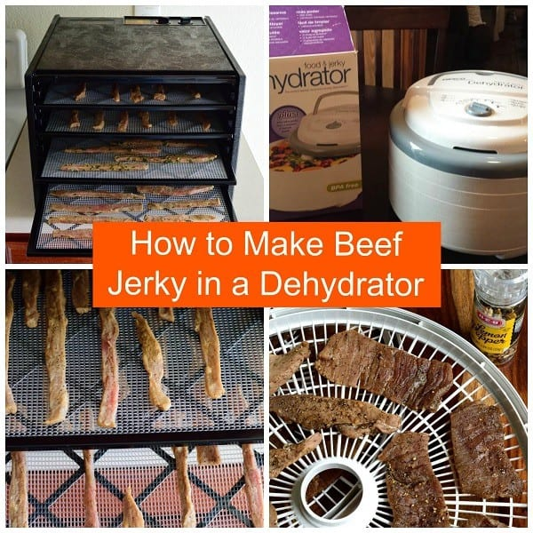 How long does it take to make ground beef jerky in a dehydrator
