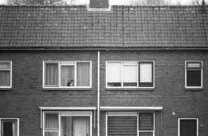 Assen, 2012 | Minolta Dynax 40 | ilford HP 5 Plus