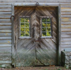 Barn Door - Shoes and Trees