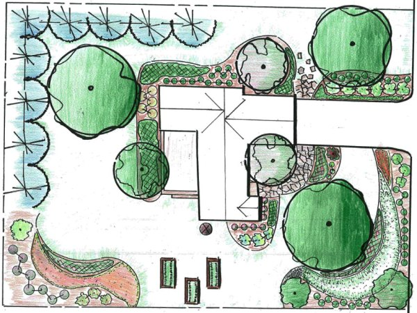step 1 plan plant