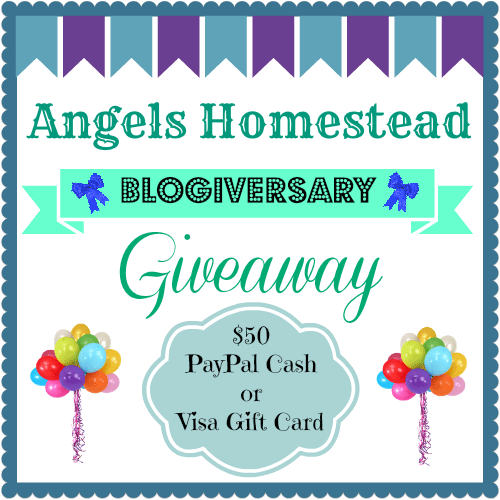 Blogiversary Giveaway
