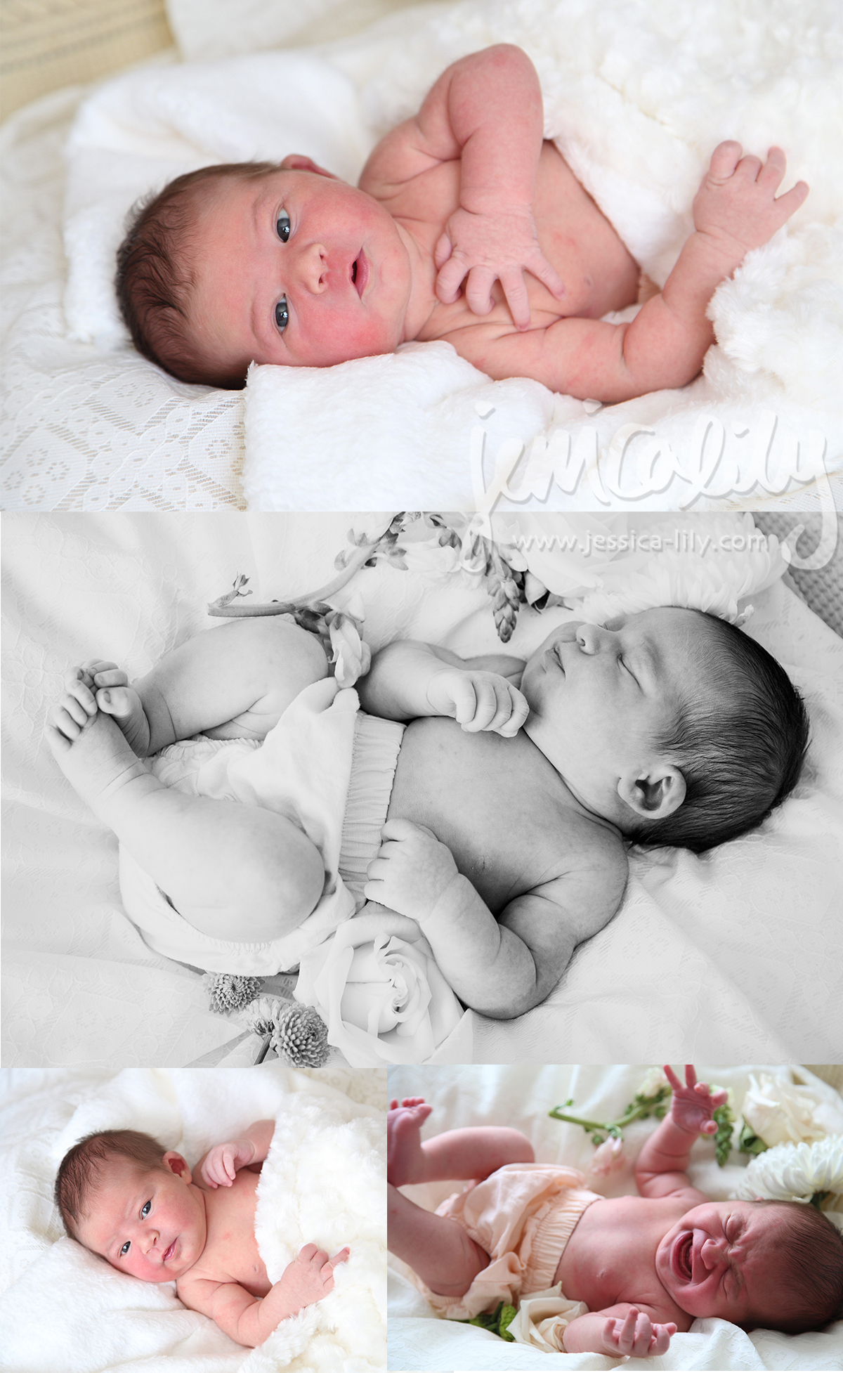 Jessica Lily - My Family