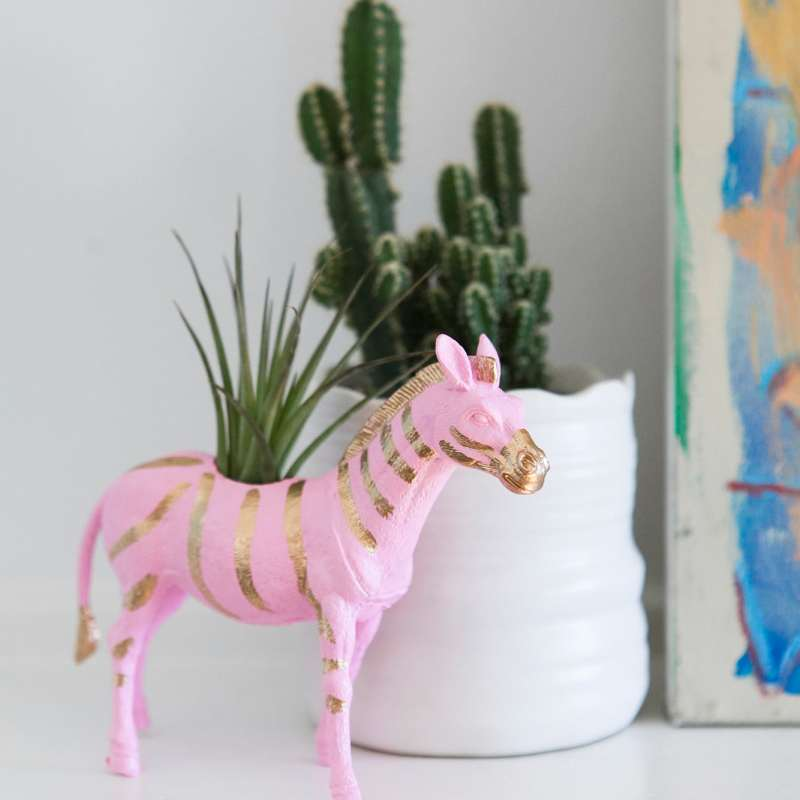 zebra-planter-mini-air-plant-colorful-decor-jessica-brigham-blog
