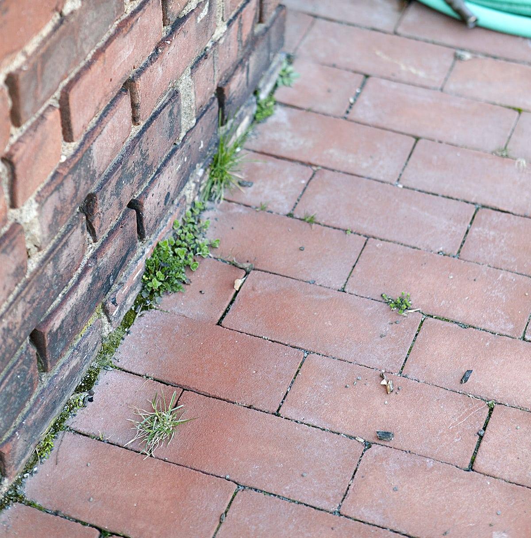 how to kill weeds naturally, natural weed killer, homemade weed killer, organic gardening, jessica brigham blog
