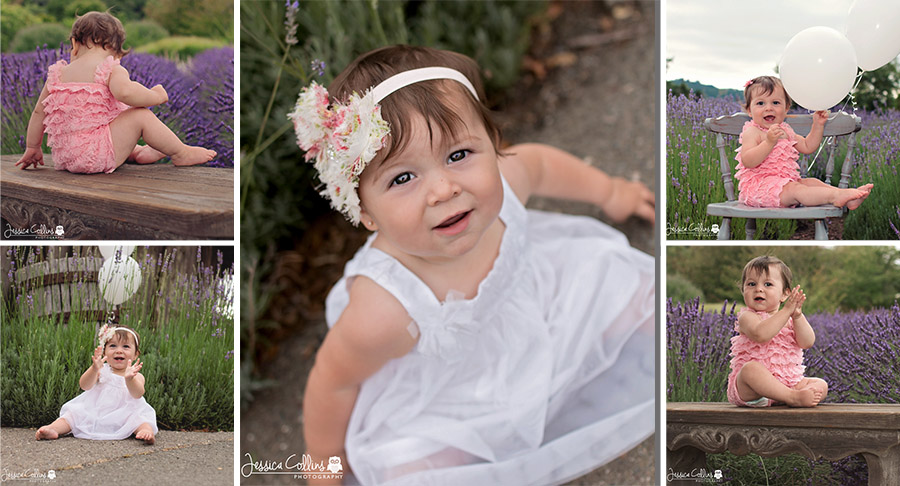 Santa Rosa, California, Lavender Fields, Child Photographer