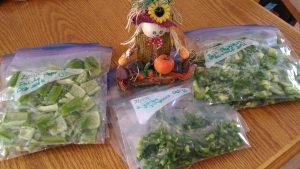 Gardener Life Harvest