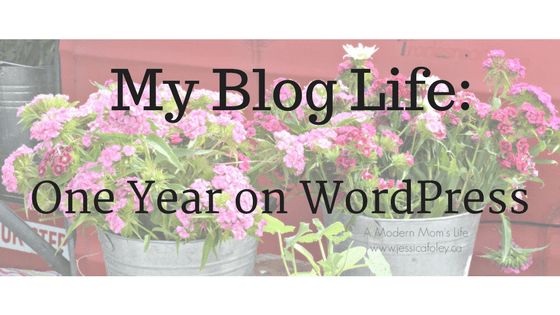 my blog life