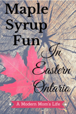 Maple Syrup Fun In Eastern Ontario