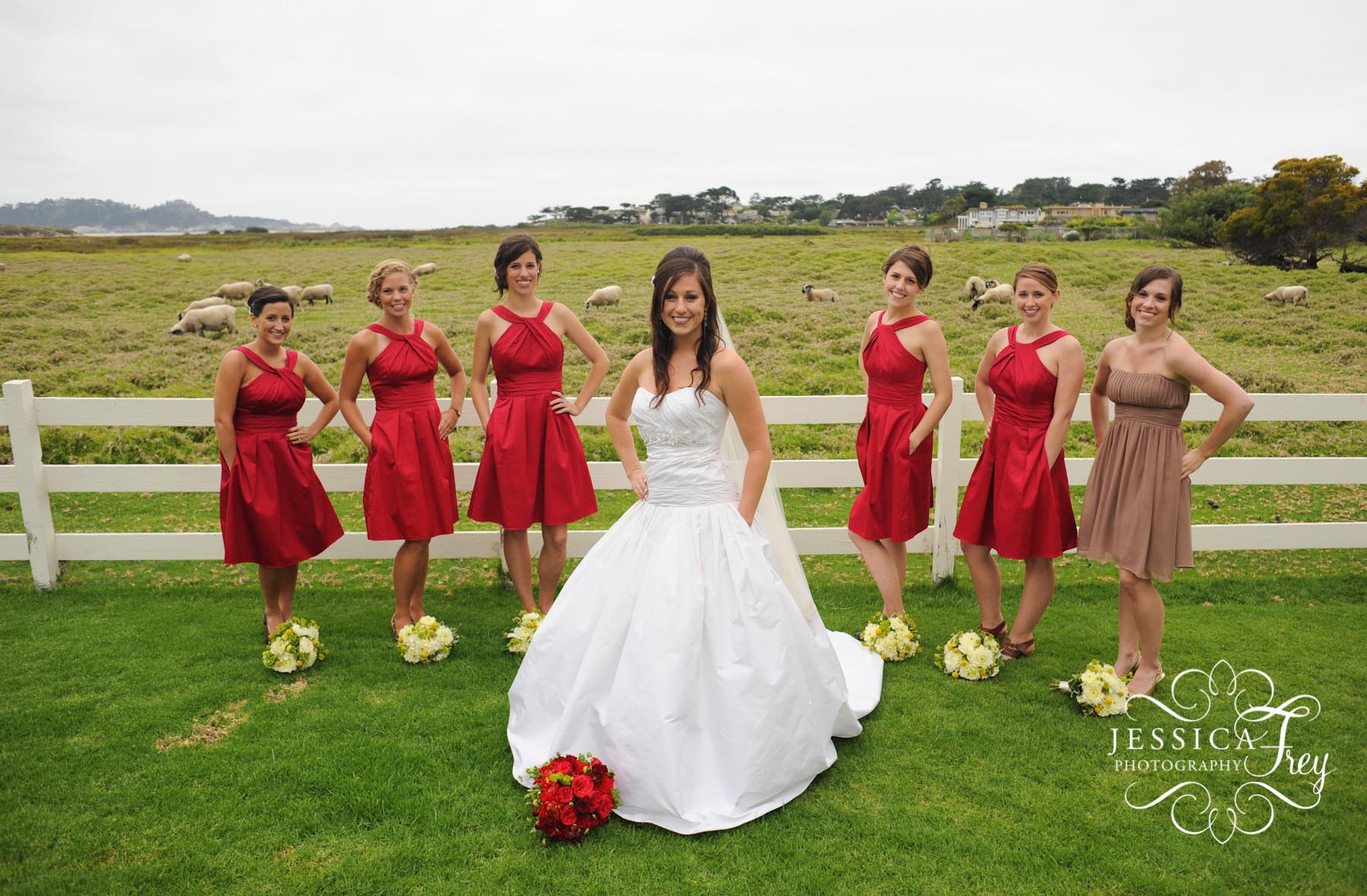 Red And White Short Bridesmaid Dresses