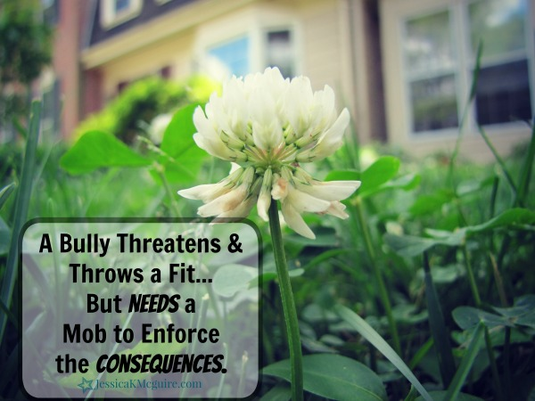 a bully needs the mob to enforce the consequences jkmcguire