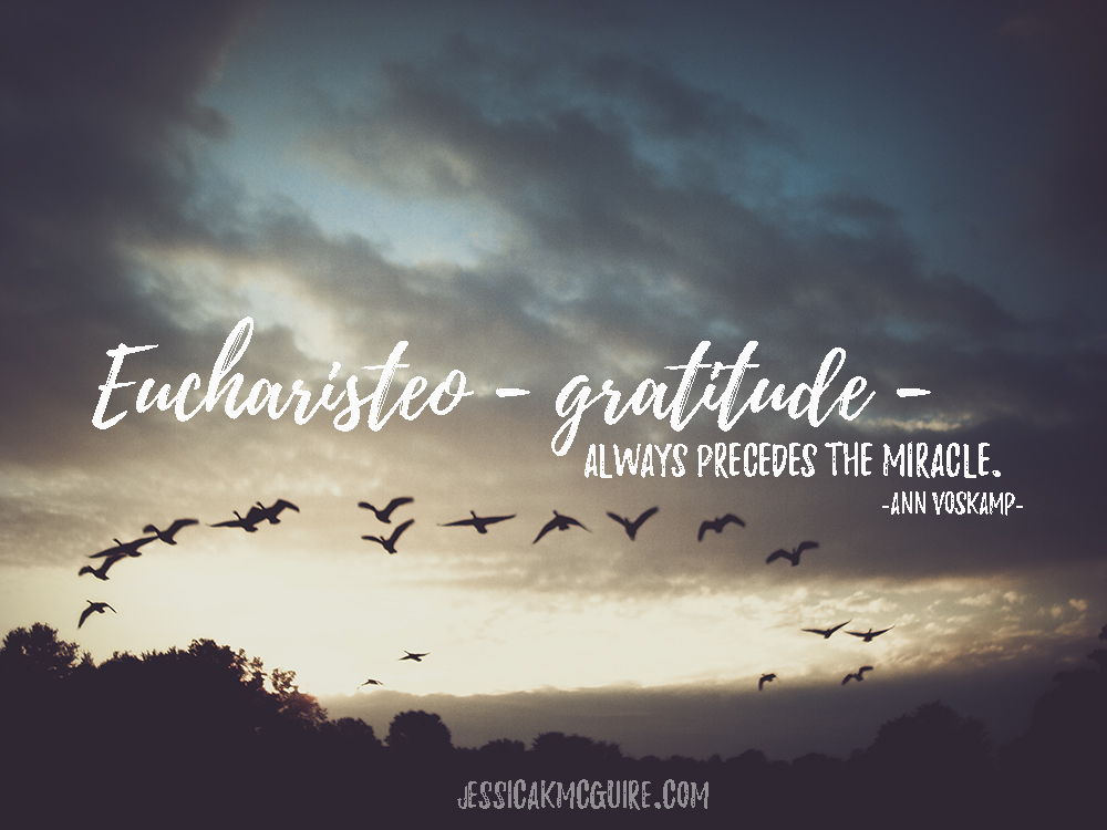 ann-voskamp-quote-gratitude-precedes-the-miracle