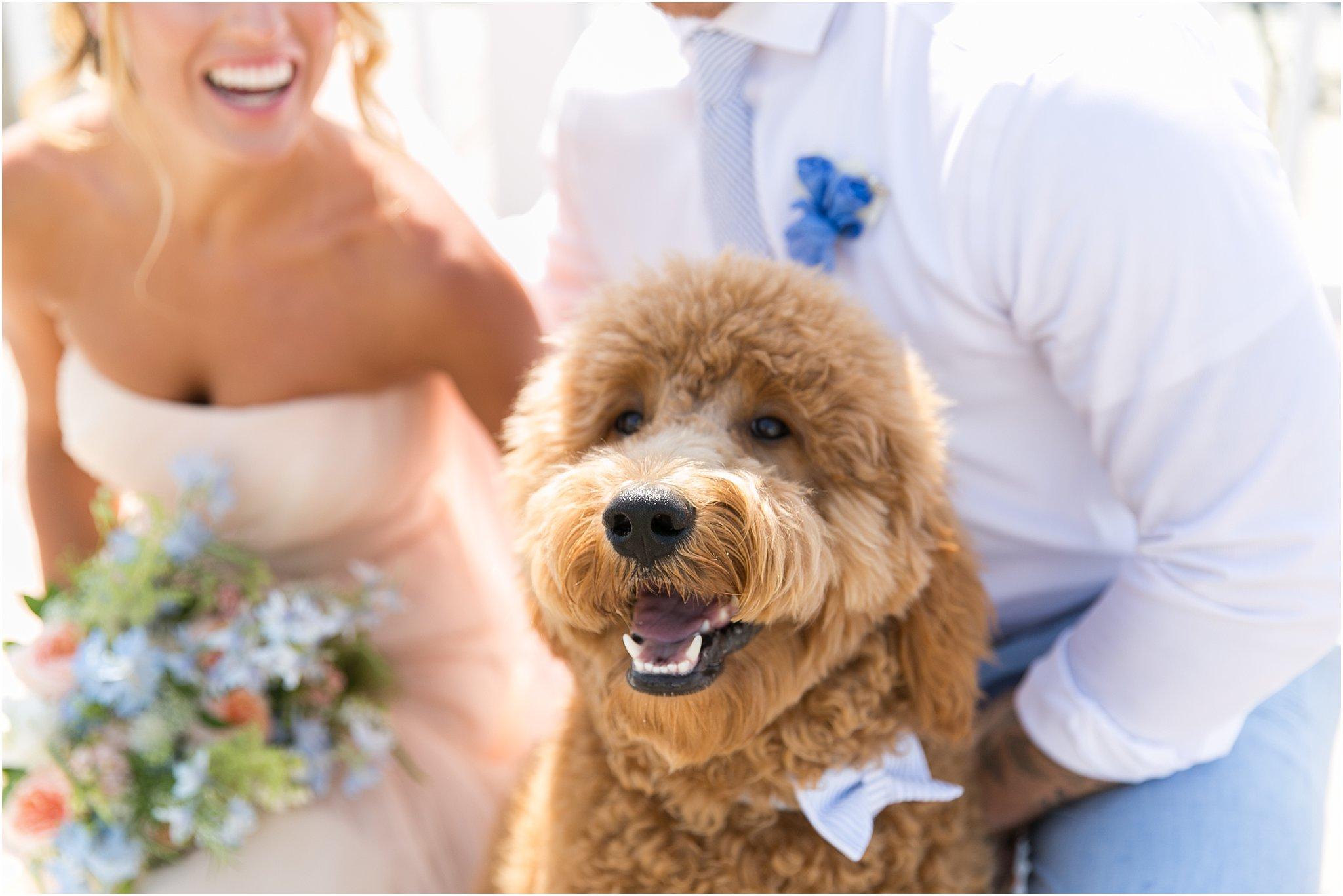 jessica_ryan_photography_virginia_beach_water_tabe_wedding_vera_wang_wedding_dress_0619