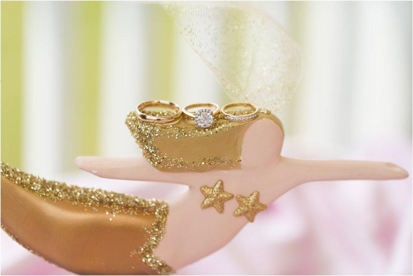 jessica_ryan_photography_virginia_beach_water_tabe_wedding_vera_wang_wedding_dress_0642