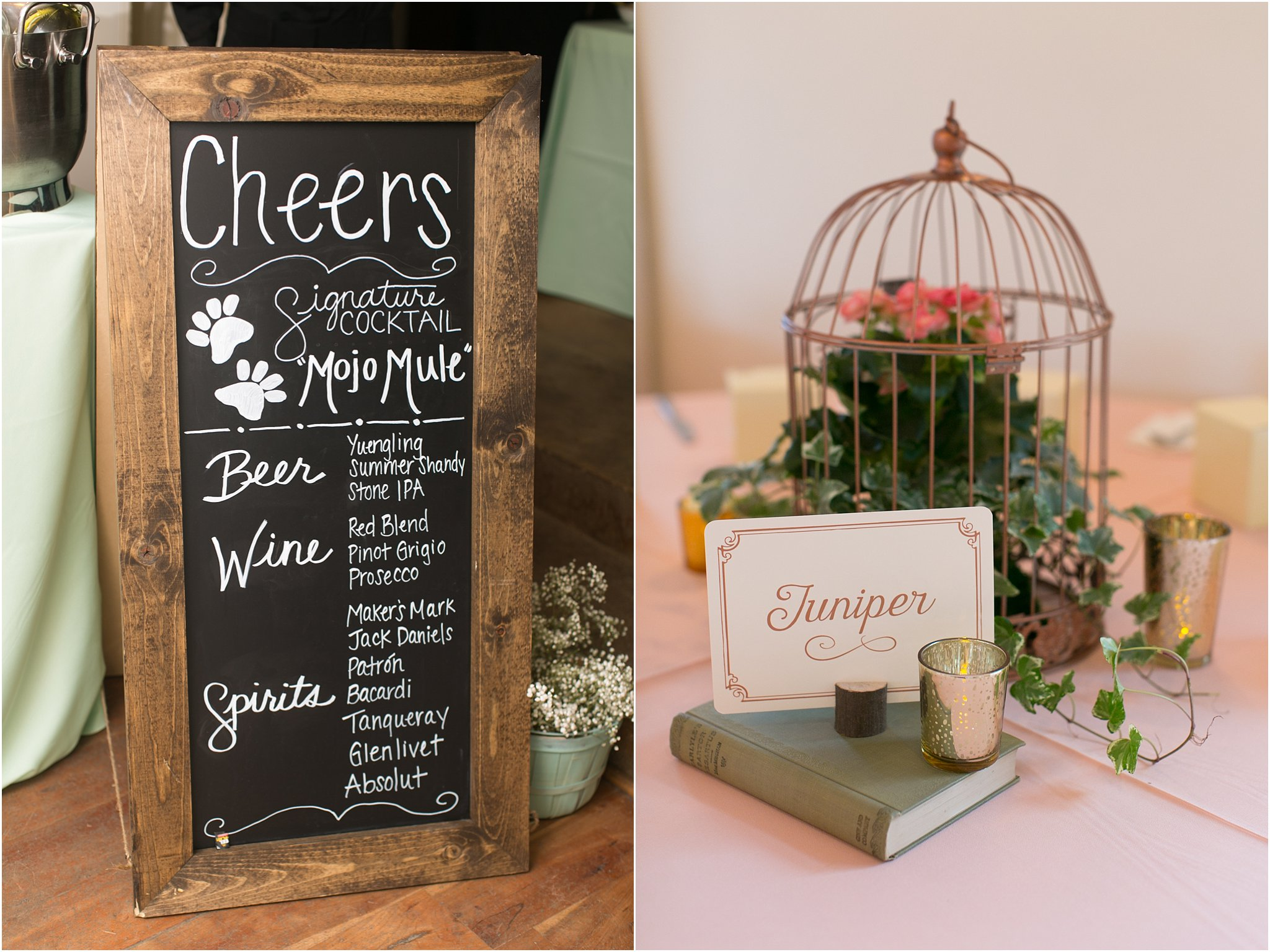 jessica_ryan_photography_virginia__middleburg_briar_patch_bed_and_breakfast_mountainside_wedding_Virginia_wedding_photographer_stella_york_wedding_dress_wedding_2599