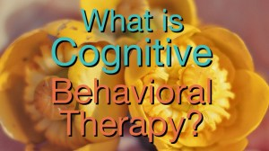 Video: What is Cognitive Behavioral therapy?